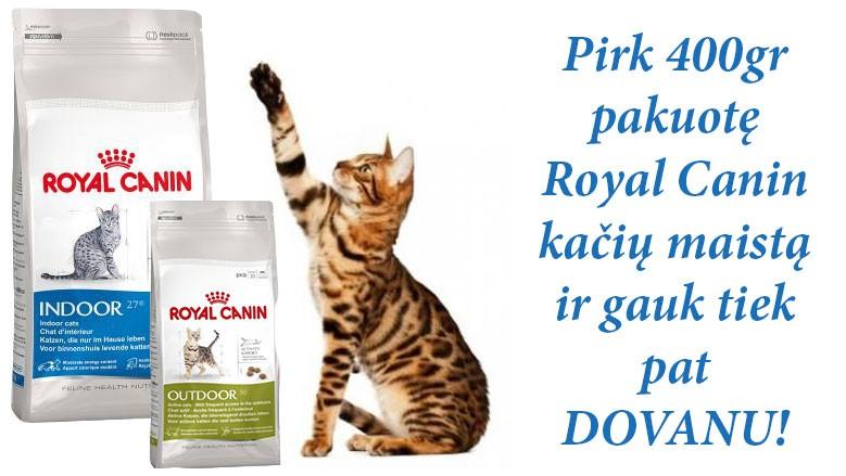 Royal Canin kaciu maistas akcija