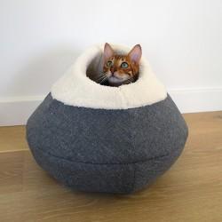 Rosewood pet apvalus urvas-guolis katėms