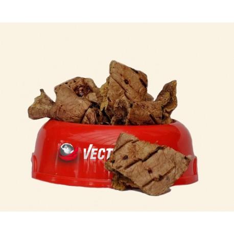 Vector-food jaučio plaučiai