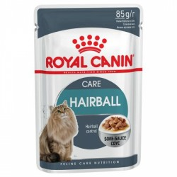 Royal Canin Hairball Care In Gravy Pouch
