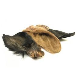 Natūralūs skanėstai galvijų ausys su kailiu šunims