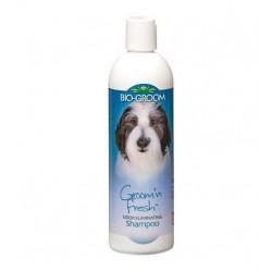 BIO-GROOM Groom'n Fresh šampūnas šunims