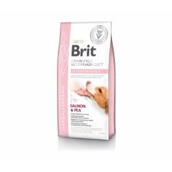 Brit GF Veterinary Diet Dog Hypoallergenic sausas maistas šunims