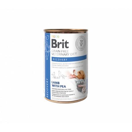 Brit GF Veterinary Diet Recovery konservai šunims ir katėms
